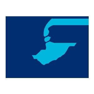 Electronico Logo